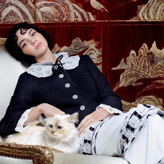 Kendall Jenner poses in Chanel character in the company of Choupette